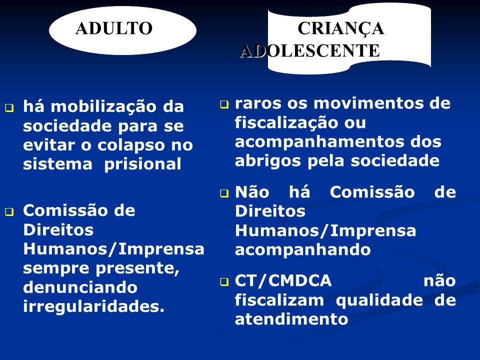 DAS ENTIDADES DE ATENDIMENTO Art.90.