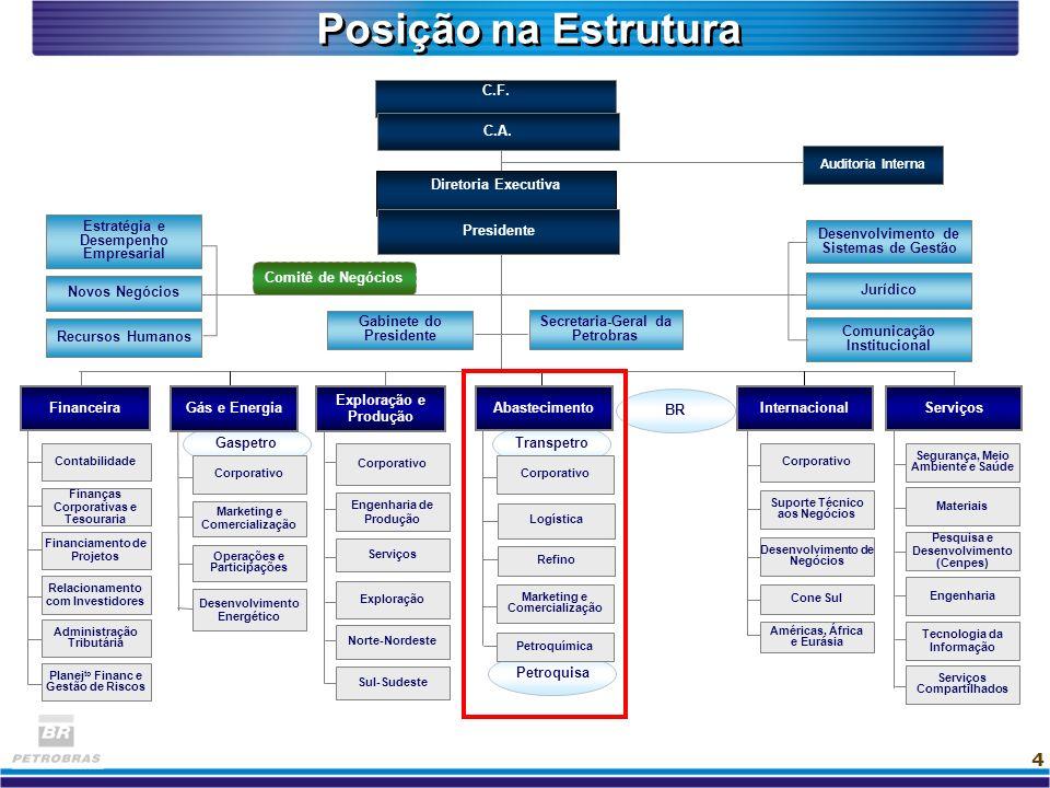 4 Gaspetro Petroquisa Transpetro Comitê de Negócios C.F. C.A. Auditoria Interna Pesquisa e Desenvolvimento (Cenpes) Materiais Engenharia Tecnologia da