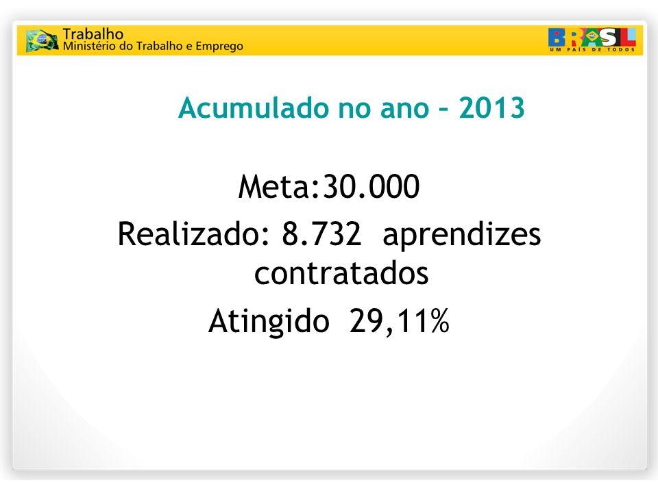 Acumulado no ano – 2013 Meta:30.000 Realizado: 8.732 aprendizes contratados Atingido 29,11%