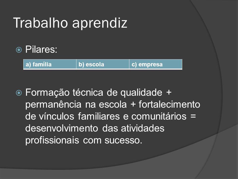 Trabalho aprendiz Pilares: Formação técnica de qualidade + permanência na escola + fortalecimento de vínculos familiares e comunitários = desenvolvime