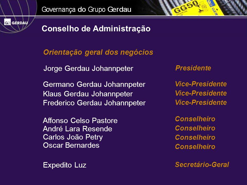 Representação da companhia Prática dos atos necessários ao funcionamento regular da Companhia Diretoria