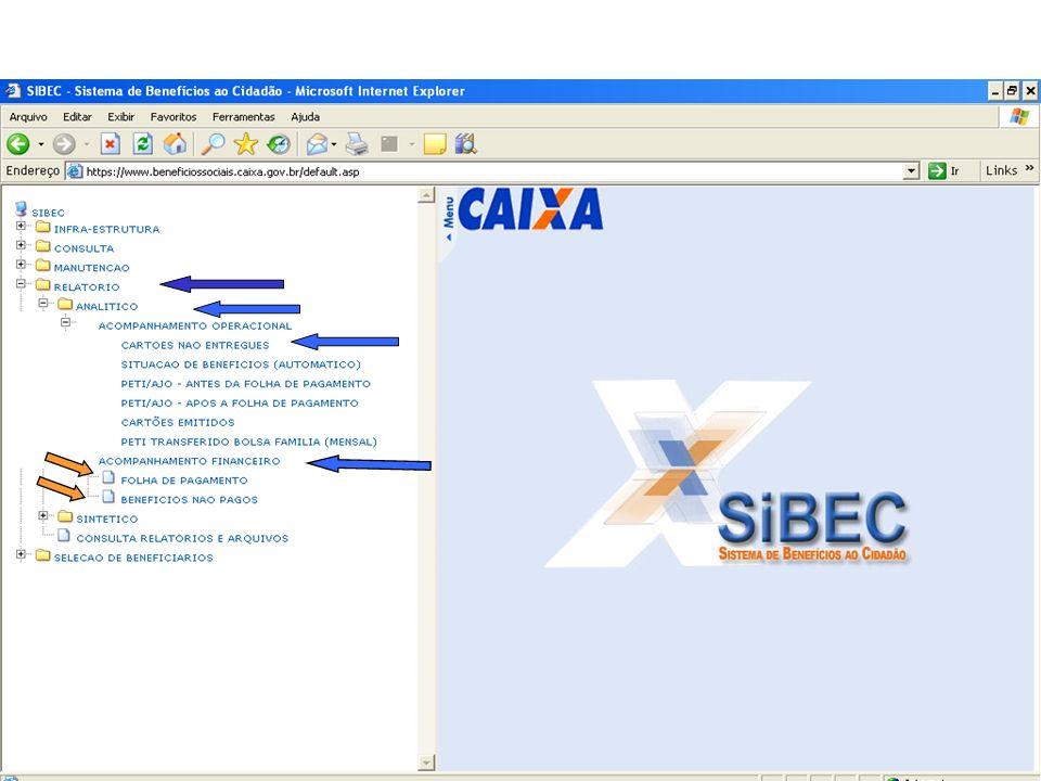 SIBEC – Módulo Relatórios