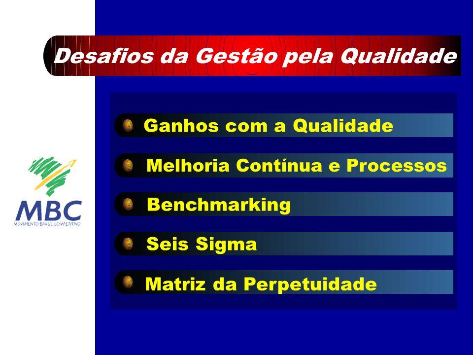 Ganhos com a Qualidade Melhoria Contínua e Processos Benchmarking Seis Sigma Matriz da Perpetuidade Desafios da Gestão pela Qualidade