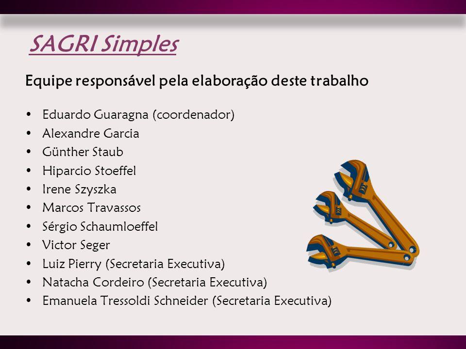 Equipe responsável pela elaboração deste trabalho Eduardo Guaragna (coordenador) Alexandre Garcia Günther Staub Hiparcio Stoeffel Irene Szyszka Marcos
