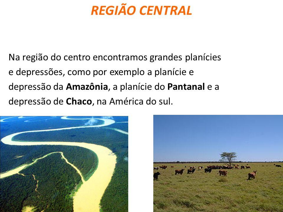 REGIÃO CENTRAL Na região do centro encontramos grandes planícies e depressões, como por exemplo a planície e depressão da Amazônia, a planície do Pant