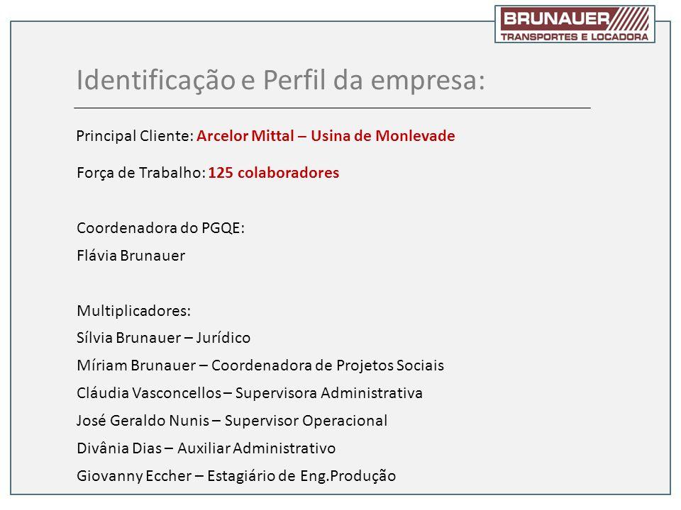 Identificação e Perfil da empresa: Principal Cliente: Arcelor Mittal – Usina de Monlevade Força de Trabalho: 125 colaboradores Coordenadora do PGQE: F