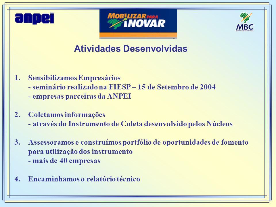 Atividades Desenvolvidas 1.Sensibilizamos Empresários - seminário realizado na FIESP – 15 de Setembro de 2004 - empresas parceiras da ANPEI 2.Coletamo