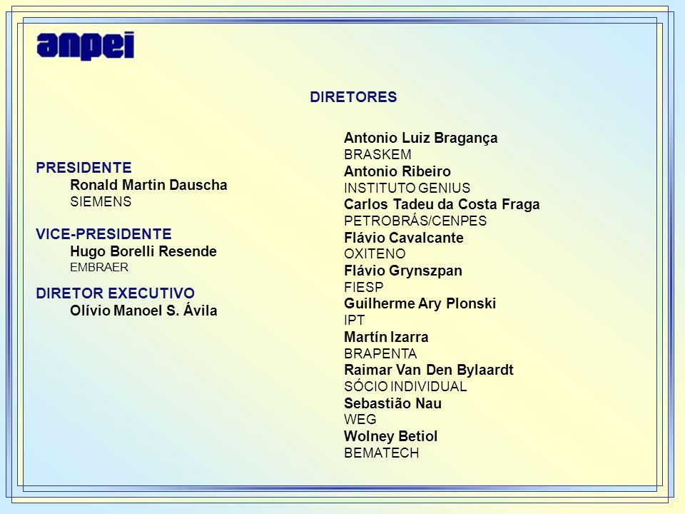 Atividades Desenvolvidas 1.Sensibilizamos Empresários - seminário realizado na FIESP – 15 de Setembro de 2004 - empresas parceiras da ANPEI 2.Coletamos informações - através do Instrumento de Coleta desenvolvido pelos Núcleos 3.