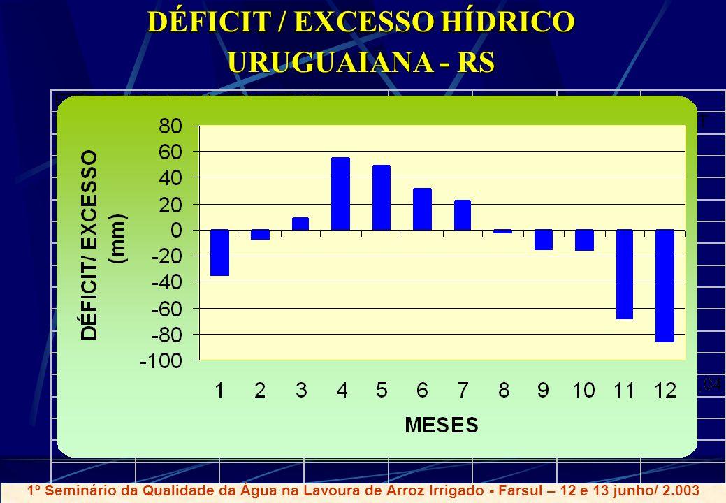 DÉFICIT / EXCESSO HÍDRICO URUGUAIANA - RS 1º Seminário da Qualidade da Água na Lavoura de Arroz Irrigado - Farsul – 12 e 13 junho/ 2.003