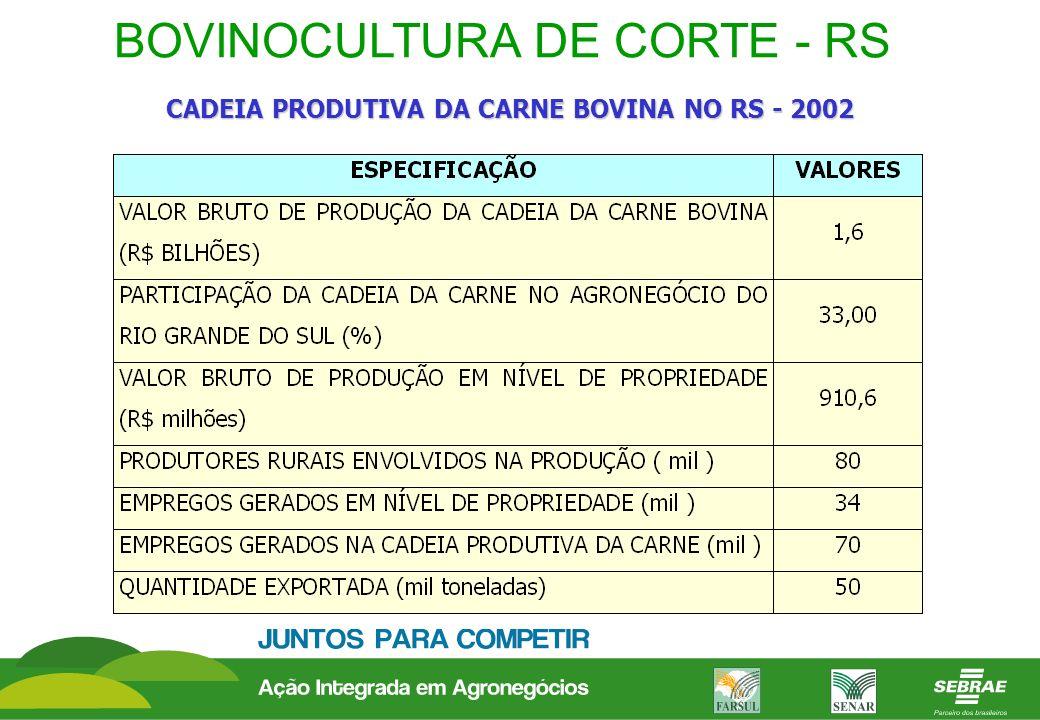BOVINOCULTURA DE CORTE - RS CADEIA PRODUTIVA DA CARNE BOVINA NO RS - 2002