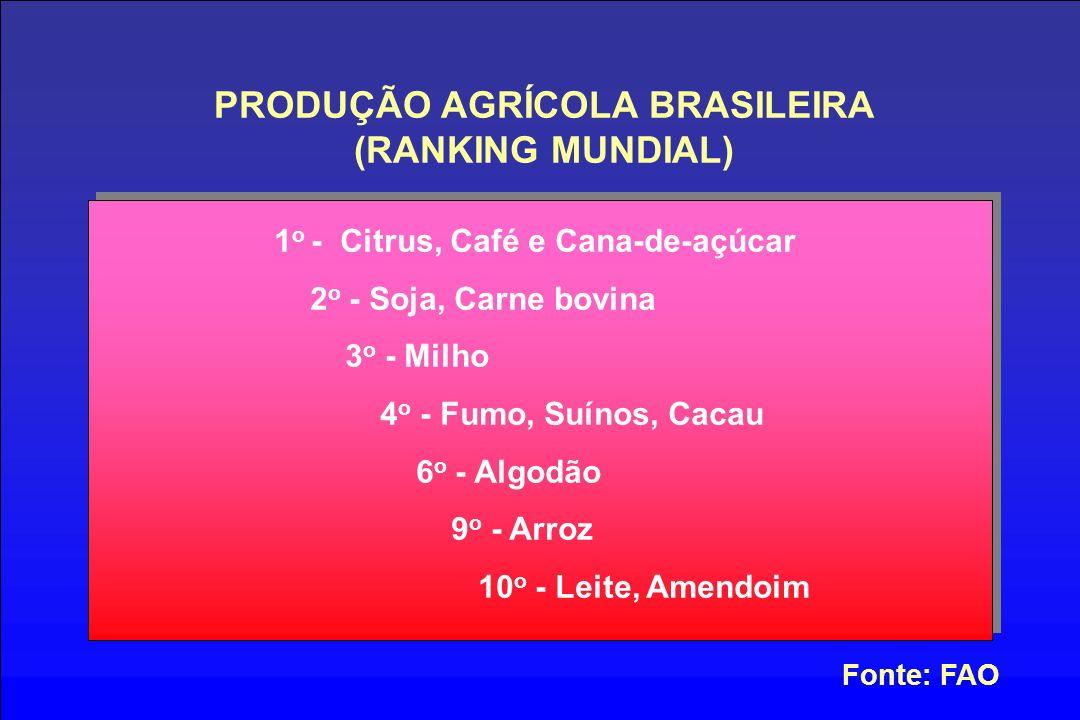 PRODUÇÃO AGRÍCOLA BRASILEIRA (RANKING MUNDIAL) Fonte: FAO 1 o - Citrus, Café e Cana-de-açúcar 2 o - Soja, Carne bovina 3 o - Milho 4 o - Fumo, Suínos, Cacau 6 o - Algodão 9 o - Arroz 10 o - Leite, Amendoim