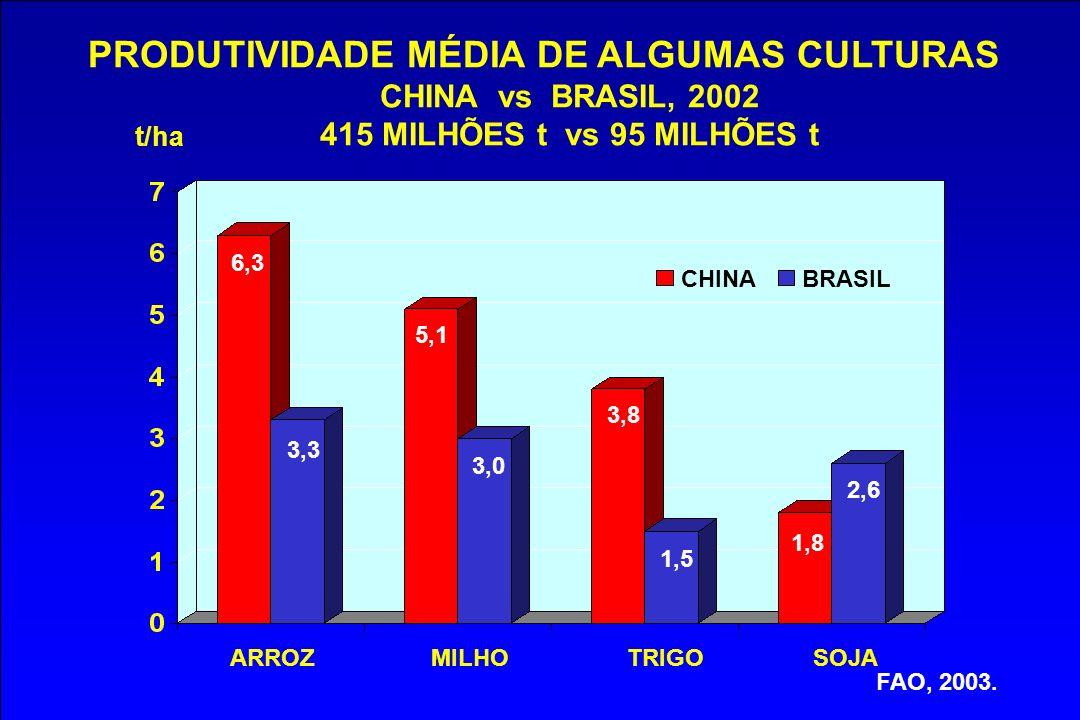 PRODUTIVIDADE MÉDIA DE ALGUMAS CULTURAS CHINA vs BRASIL, 2002 415 MILHÕES t vs 95 MILHÕES t FAO, 2003. CHINABRASIL t/ha 6,3 3,3 3,0 3,8 1,8 1,5 5,1 2,