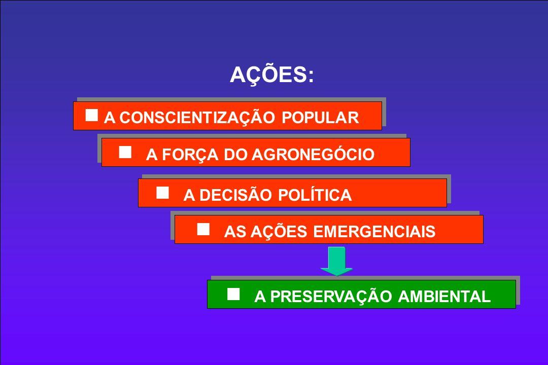 A FORÇA DO AGRONEGÓCIO A CONSCIENTIZAÇÃO POPULAR A DECISÃO POLÍTICA AS AÇÕES EMERGENCIAIS AÇÕES: A PRESERVAÇÃO AMBIENTAL