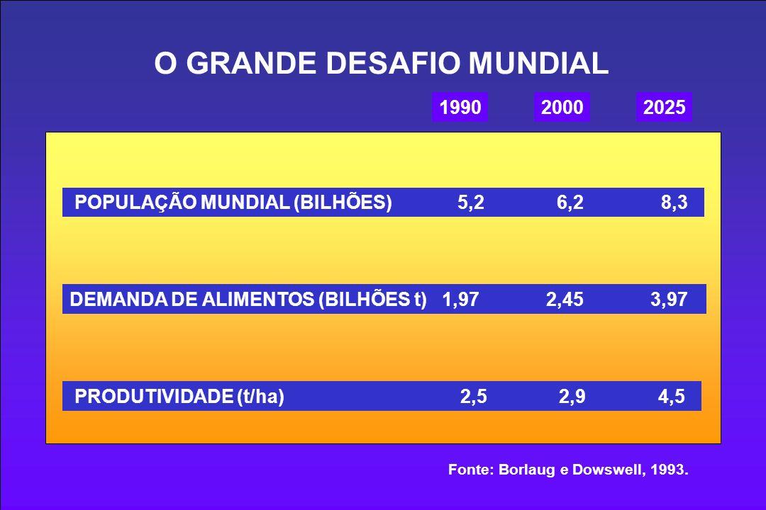 O GRANDE DESAFIO MUNDIAL 199020002025 POPULAÇÃO MUNDIAL (BILHÕES) 5,2 6,2 8,3 DEMANDA DE ALIMENTOS (BILHÕES t) 1,97 2,45 3,97 PRODUTIVIDADE (t/ha) 2,5 2,9 4,5 Fonte: Borlaug e Dowswell, 1993.