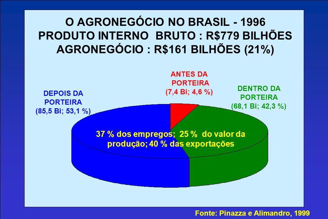 O AGRONEGÓCIO NO BRASIL - 1996 PRODUTO INTERNO BRUTO : R$779 BILHÕES AGRONEGÓCIO : R$161 BILHÕES (21%) ANTES DA PORTEIRA (7,4 Bi; 4,6 %) DENTRO DA PORTEIRA (68,1 Bi; 42,3 %) DEPOIS DA PORTEIRA (85,5 Bi; 53,1 %) Fonte: Pinazza e Alimandro, 1999 37 % dos empregos; 25 % do valor da produção; 40 % das exportações