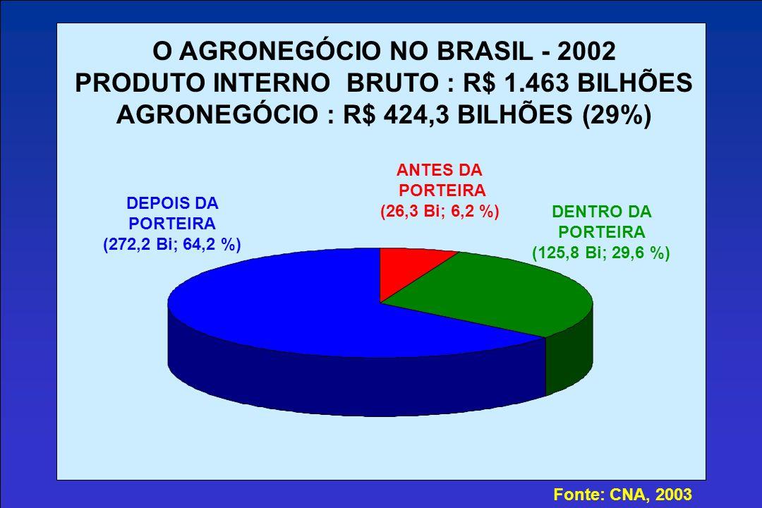 O AGRONEGÓCIO NO BRASIL - 2002 PRODUTO INTERNO BRUTO : R$ 1.463 BILHÕES AGRONEGÓCIO : R$ 424,3 BILHÕES (29%) ANTES DA PORTEIRA (26,3 Bi; 6,2 %) DENTRO DA PORTEIRA (125,8 Bi; 29,6 %) DEPOIS DA PORTEIRA (272,2 Bi; 64,2 %) Fonte: CNA, 2003