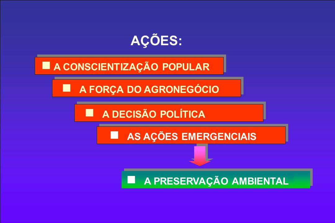 AS AÇÕES EMERGENCIAIS A FORÇA DO AGRONEGÓCIO A CONSCIENTIZAÇÃO POPULAR A DECISÃO POLÍTICA AÇÕES: A PRESERVAÇÃO AMBIENTAL