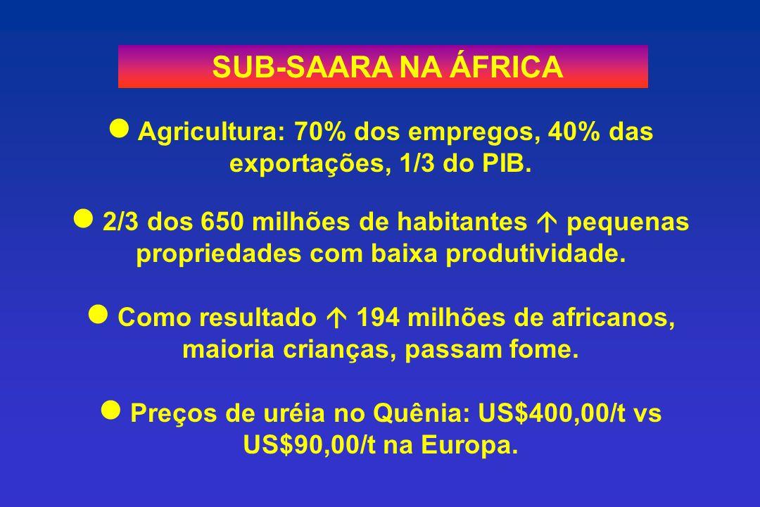 SUB-SAARA NA ÁFRICA Agricultura: 70% dos empregos, 40% das exportações, 1/3 do PIB. 2/3 dos 650 milhões de habitantes pequenas propriedades com baixa