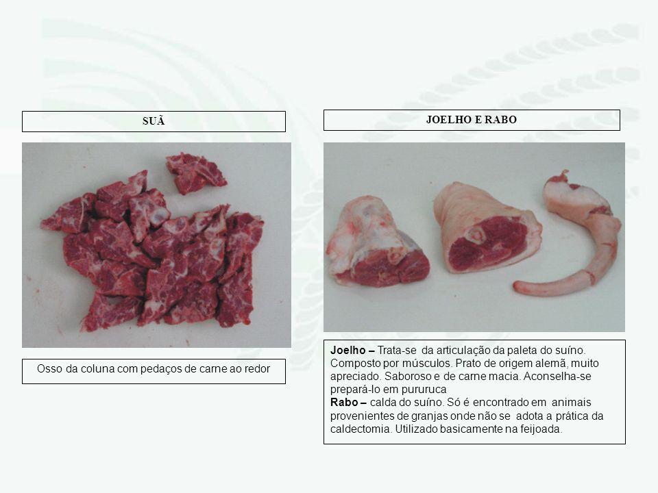 Osso da coluna com pedaços de carne ao redor SUÃ Joelho – Trata-se da articulação da paleta do suíno. Composto por músculos. Prato de origem alemã, mu