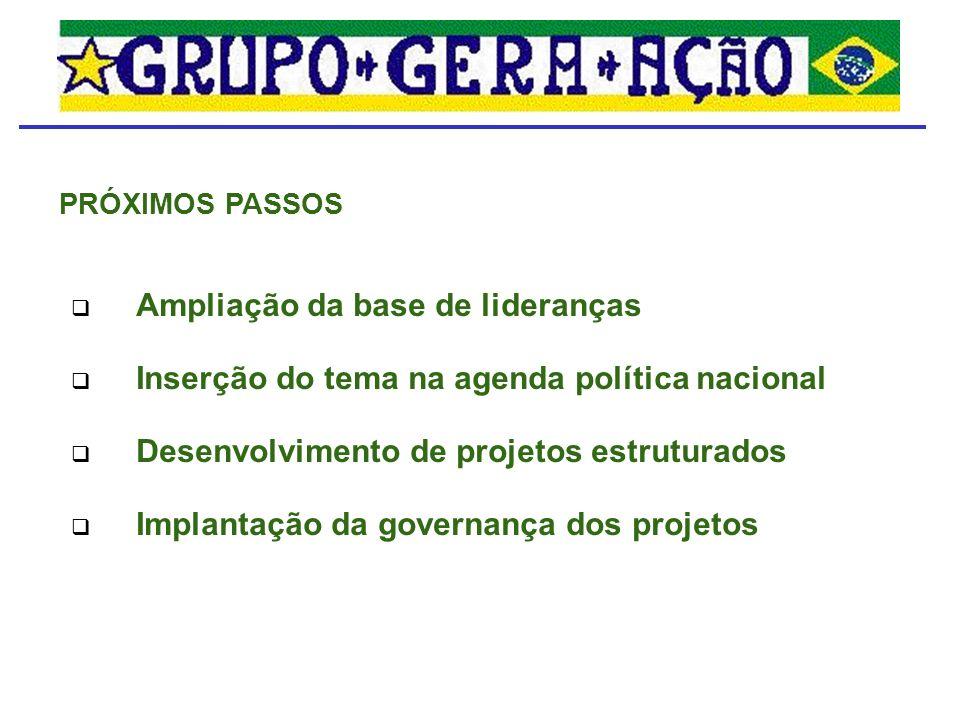 Ampliação da base de lideranças Inserção do tema na agenda política nacional Desenvolvimento de projetos estruturados Implantação da governança dos projetos PRÓXIMOS PASSOS
