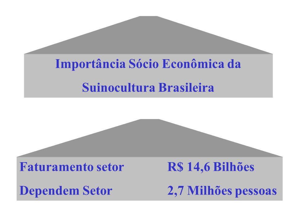 Importância Sócio Econômica da Suinocultura Brasileira Faturamento setorR$ 14,6 Bilhões Dependem Setor2,7 Milhões pessoas