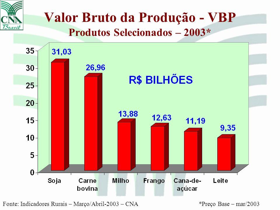Valor Bruto da Produção - VBP Produtos Selecionados – 2003* Fonte: Indicadores Rurais – Março/Abril-2003 – CNA*Preço Base – mar/2003
