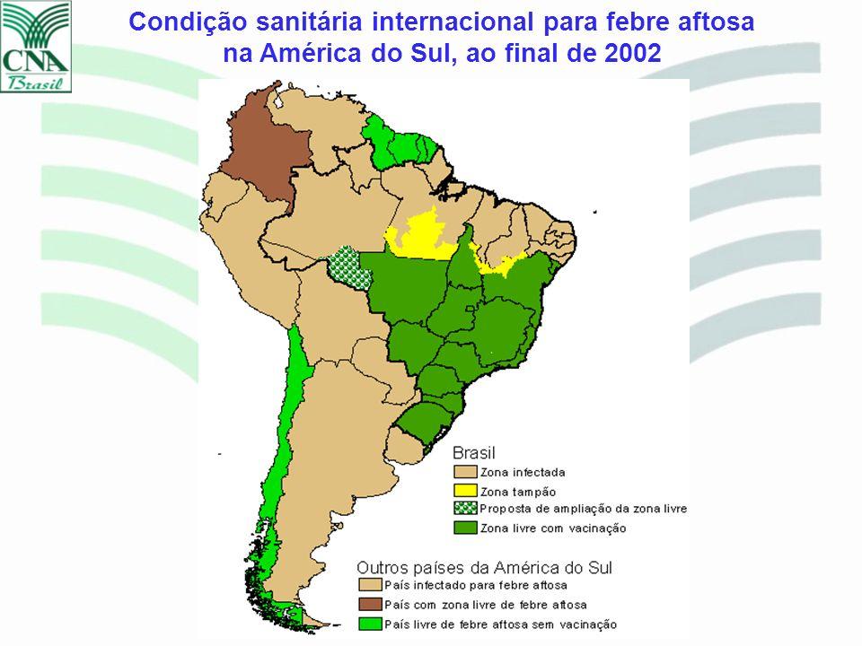 FOCOS DE FEBRE AFTOSA BRASIL – 1992/2003 ANOFOCOS 1992 1.232 1993 1.432 1994 2.093 1995 589 1996 215 1997 167 1998 36 1999 37 2000 47 2001 37 2002 0 2003* 0 Fonte: DDA/SDA/MAPA *Janeiro a Junho