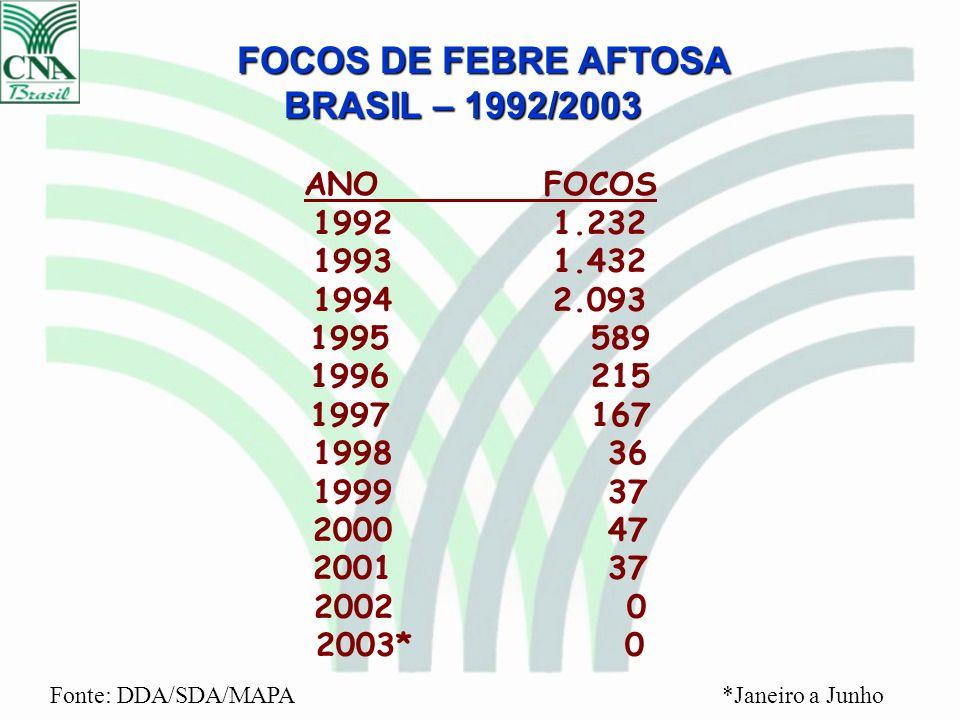 FOCOS DE FEBRE AFTOSA BRASIL – 1992/2003 ANOFOCOS 1992 1.232 1993 1.432 1994 2.093 1995 589 1996 215 1997 167 1998 36 1999 37 2000 47 2001 37 2002 0 2