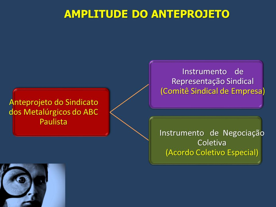 AMPLITUDE DO ANTEPROJETO