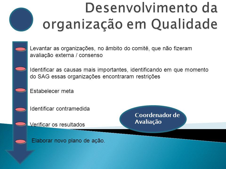 Identificar organizações potenciais para participarem do SAGS Planejar e organizar o evento para aplicação do SAGS Divulgar o evento convidando as organizações para aplicação do SAGS Acompanhar as organizações e verificar os resultados Estruturar próximo evento SAGS.