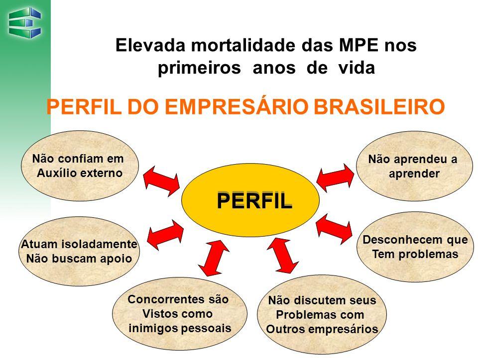 Elevada mortalidade das MPE nos primeiros anos de vida PERFIL DO EMPRESÁRIO BRASILEIRO Não confiam em Auxílio externo Atuam isoladamente Não buscam ap