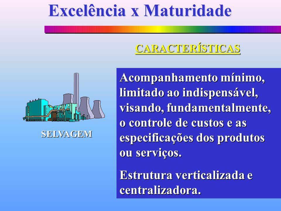 SELVAGEM Acompanhamento mínimo, limitado ao indispensável, visando, fundamentalmente, o controle de custos e as especificações dos produtos ou serviço