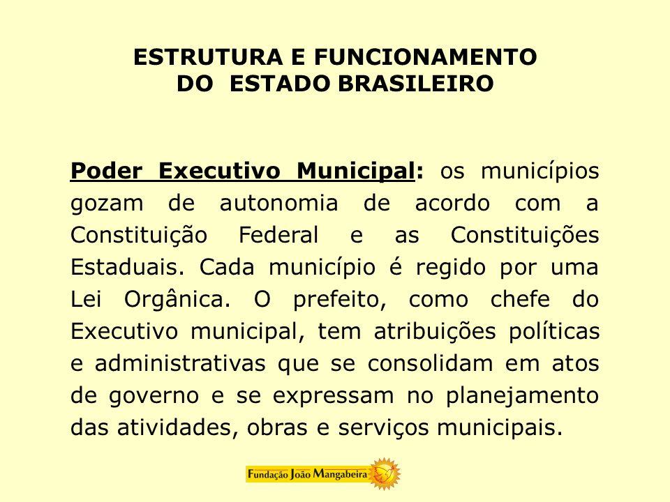 Poder Executivo Municipal: os municípios gozam de autonomia de acordo com a Constituição Federal e as Constituições Estaduais. Cada município é regido