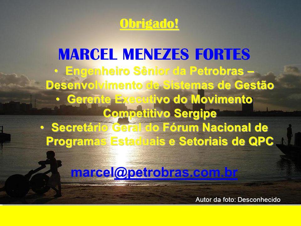 MARCEL MENEZES FORTES Engenheiro Sênior da Petrobras – Desenvolvimento de Sistemas de GestãoEngenheiro Sênior da Petrobras – Desenvolvimento de Sistem