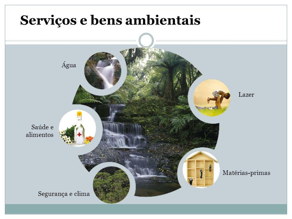 Lazer Matérias-primas Segurança e clima Saúde e alimentos Água Serviços e bens ambientais