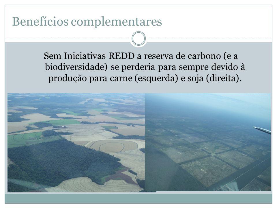 Sem Iniciativas REDD a reserva de carbono (e a biodiversidade) se perderia para sempre devido à produção para carne (esquerda) e soja (direita). Benef