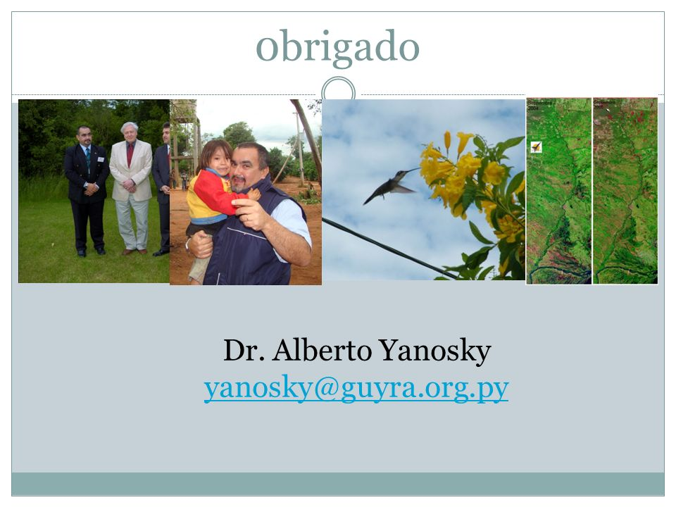 0brigado Dr. Alberto Yanosky yanosky@guyra.org.py