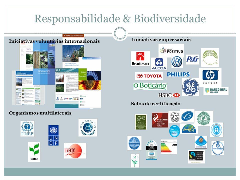 Responsabilidade Coorporativa & SPO Para onde vai a empresa.