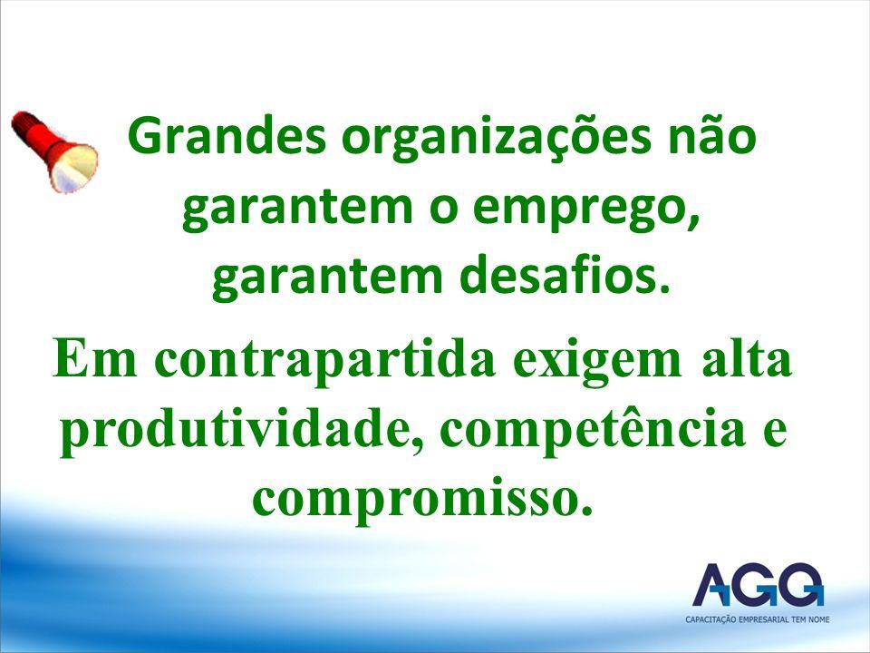 Grandes organizações não garantem o emprego, garantem desafios. Em contrapartida exigem alta produtividade, competência e compromisso.