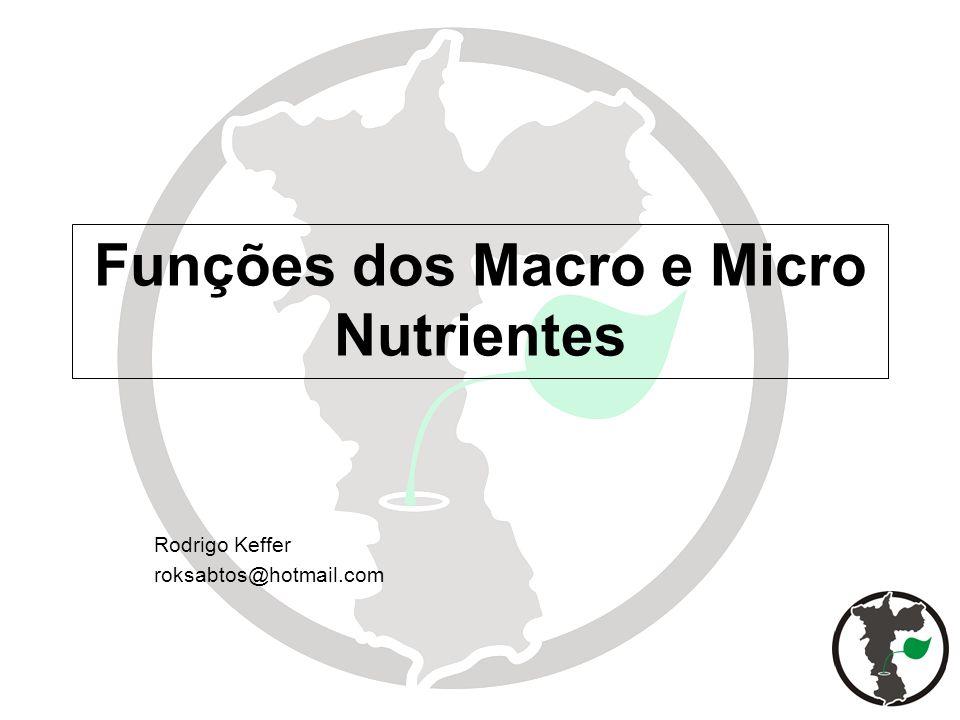 Funções dos Macro e Micro Nutrientes Rodrigo Keffer roksabtos@hotmail.com