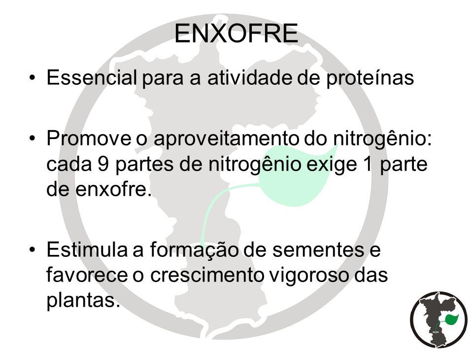 ENXOFRE Essencial para a atividade de proteínas Promove o aproveitamento do nitrogênio: cada 9 partes de nitrogênio exige 1 parte de enxofre. Estimula