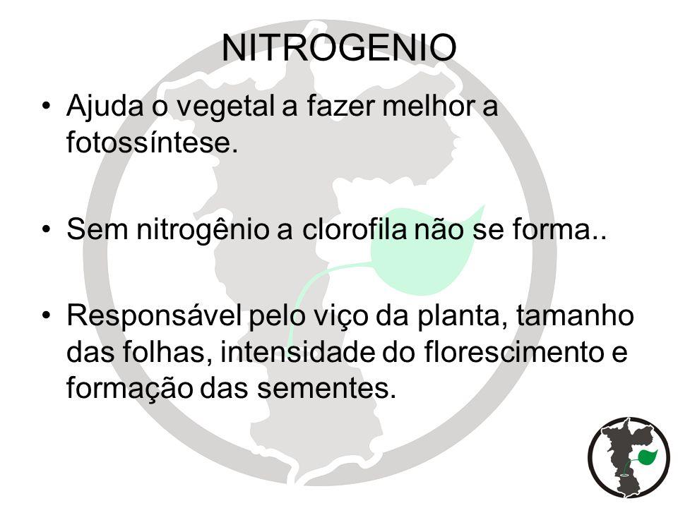 NITROGENIO Ajuda o vegetal a fazer melhor a fotossíntese. Sem nitrogênio a clorofila não se forma.. Responsável pelo viço da planta, tamanho das folha