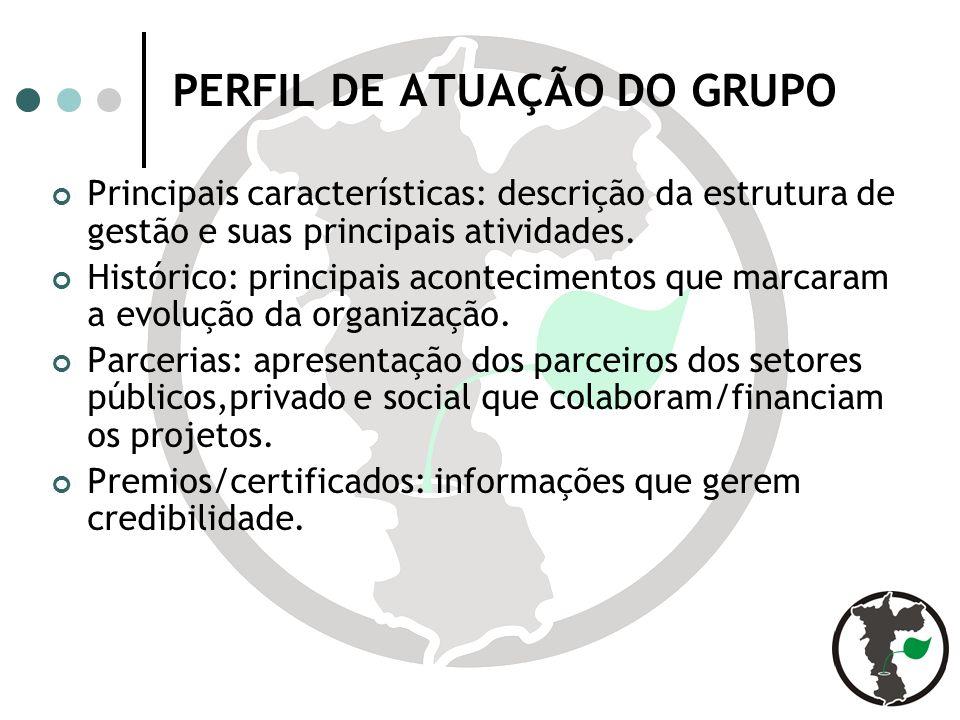 PERFIL DE ATUAÇÃO DO GRUPO Principais características: descrição da estrutura de gestão e suas principais atividades.