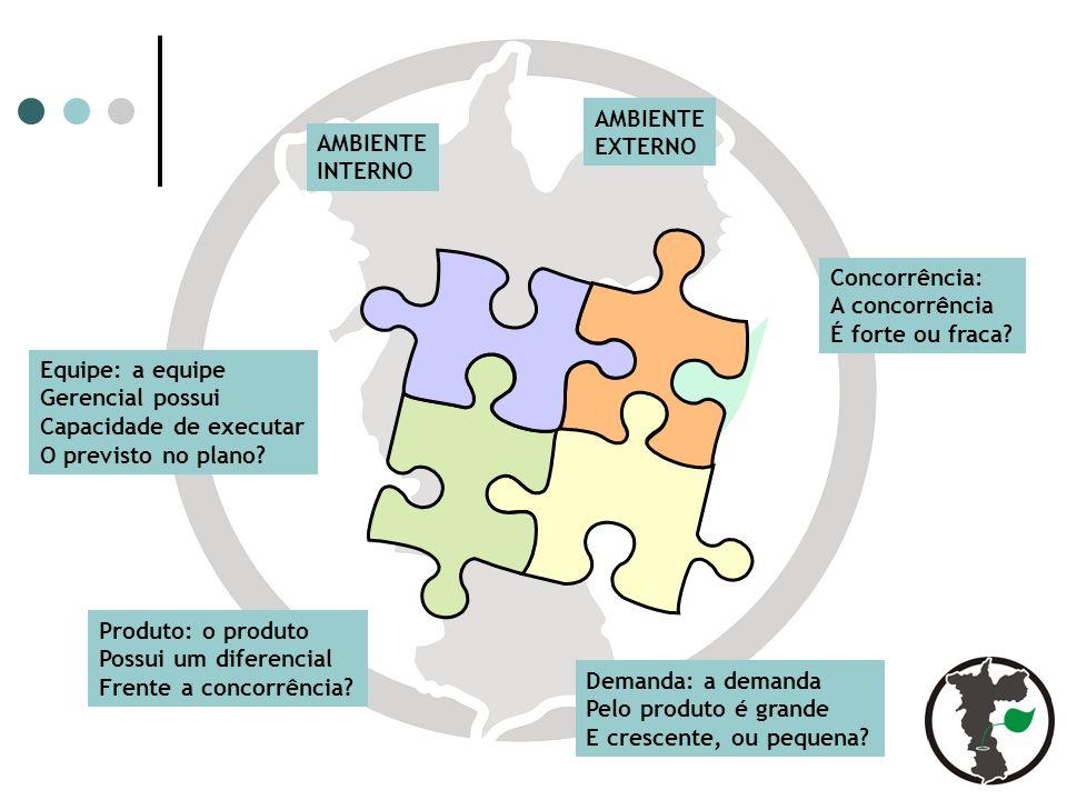Equipe: a equipe Gerencial possui Capacidade de executar O previsto no plano.