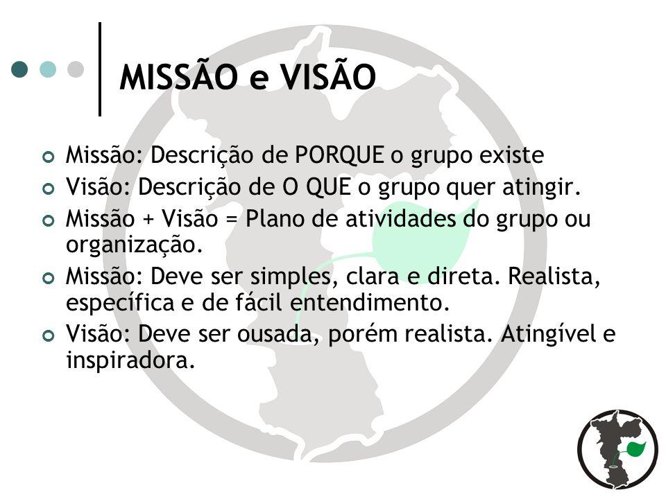 MISSÃO e VISÃO Missão: Descrição de PORQUE o grupo existe Visão: Descrição de O QUE o grupo quer atingir.