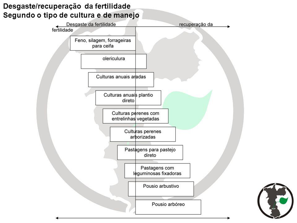 Desgaste/recuperação da fertilidade Segundo o tipo de cultura e de manejo