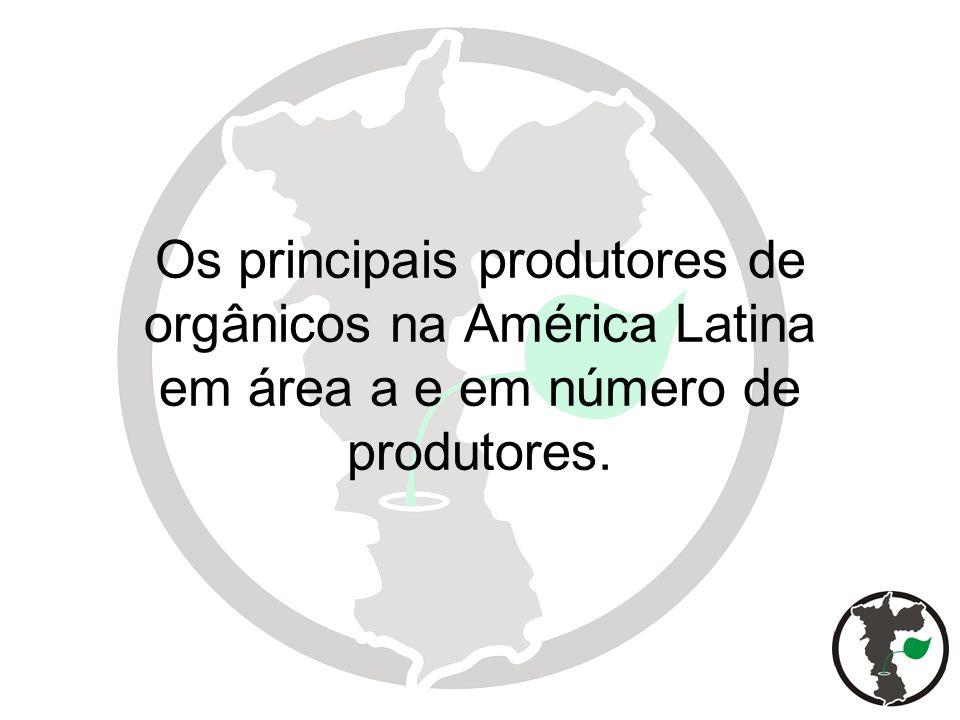 País Área Número de % área (Há) produtores total Argentina 3.000.000 1.400 1,77 Brasil 800.000 4.500 0,12 Chile 2.700 200 0,02 Peru 12.000 2.072 0,04 México 85.676 27.282 0,08 Uruguai 1.300 150 0,01