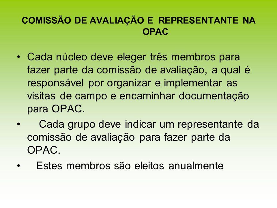 COMISSÃO DE AVALIAÇÃO E REPRESENTANTE NA OPAC Cada núcleo deve eleger três membros para fazer parte da comissão de avaliação, a qual é responsável por