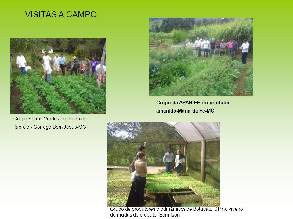 VISITAS A CAMPO Grupo Serras Verdes no produtor laércio - Corrego Bom Jesus-MG Grupo da APAN-FE no produtor amarildo-Maria da Fé-MG Grupo de produtore