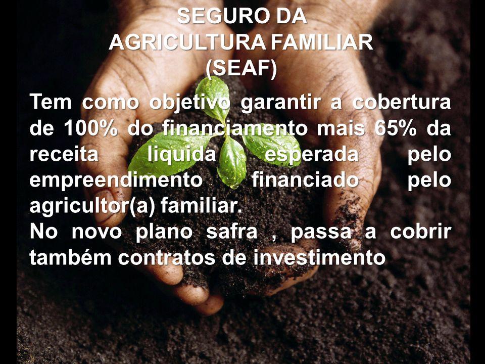 SEGURO DA AGRICULTURA FAMILIAR (SEAF) Tem como objetivo garantir a cobertura de 100% do financiamento mais 65% da receita liquida esperada pelo empree